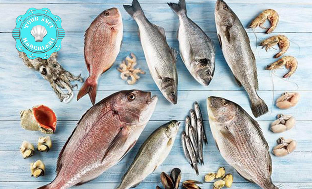 Kalkan Nasıl Bir Balık Türüdür